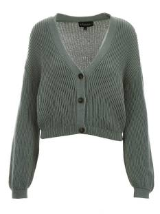 Elvira  Elvira E1 21-012 CARDIGAN EVI Vest 622 light green