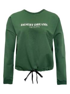Elvira  Elvira E1 21-043 SWEATER DESERT Sweater 003 green