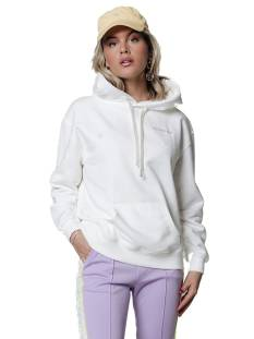 Colourful Rebel 10165 CLRFL RBL OVERSIZED HOODIE Wit