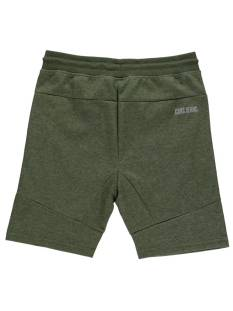 Cars 40984 ROXBURY SHORT Groen