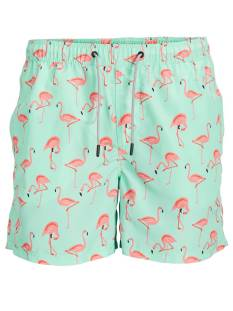 Jack & Jones Premium Broek Jack & Jones Premium JJIARUBA JJSWIMSHORTS AKM ANIMAL Korte Broeken  brook green 12169645