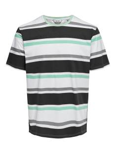Only & Sons ONSLEX SS REG STRIPED TEE Print T-Shirt white navy grey 22012625