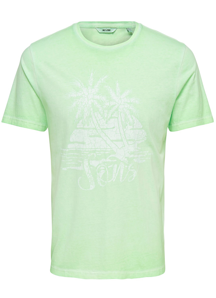 Only & Sons heren Shirts ONSPIMMIT SS NEON TEE S Groen