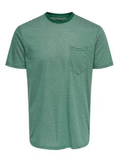 Only & Sons Shirt Only & Sons ONSADAN JACQUARD REG TEE Print T-Shirt trekking green 22014598