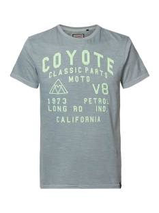 Petrol M-1010-TSR645 Print T-Shirt 6137 hedge green