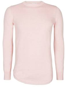 Pure White  Pure White 18010302 KNITTED CREWNECK Trui 20 old pink
