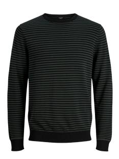 Jack & Jones Premium  Jack & Jones Premium JPRRAW KNIT CREW NECK Trui darkest spruce 12155187