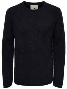 Only & Sons  Only & Sons ONSTROUGH KNIT SL 3108 Trui dark navy 22013108