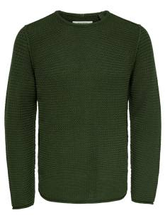 Only & Sons  Only & Sons ONSTROUGH KNIT SL 3108 Trui forest night 22013108