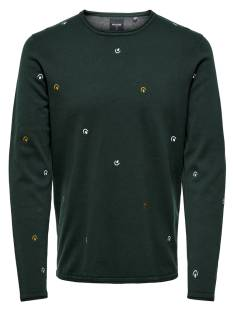 Only & Sons  Only & Sons ONSGARSON 12 AO EMBROIDERY Trui darkest spruce 22012590