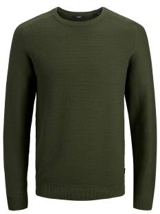 Jack & Jones Premium JPRBLAADAM KNIT CREW NECK STS Trui forest night 12178459