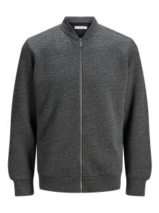 Jack & Jones  Jack & Jones JJSTRUCTURE SWEAT ZIP BASEBALL Vest dark grey melange 12174473