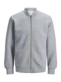 Jack & Jones  Jack & Jones JJSTRUCTURE SWEAT ZIP BASEBALL Vest light grey melange 12174473