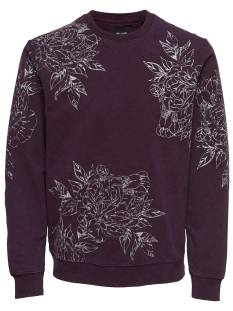 Only & Sons  Only & Sons ONSTONY AOP WASHED CREW SWEAT Sweater winetasting 22011440