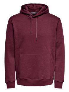 Only & Sons  Only & Sons ONSNOAQUIN HOODIE SWEAT Sweater zinfandel 22014258