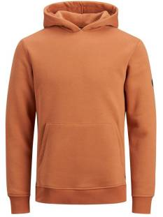 Jack & Jones Premium JPRBLAMICK SWEAT HOOD Hoodies adobe 12163134