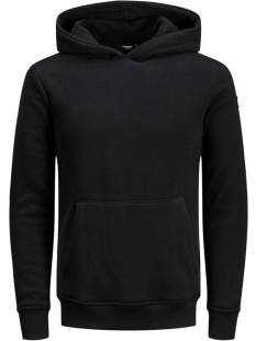 Jack & Jones Premium JPRBLAMICK SWEAT HOOD Hoodies black 12163134