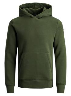 Jack & Jones Premium JPRBLAMICK SWEAT HOOD Groen